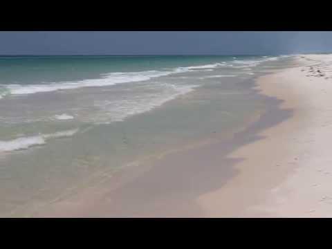 Shell Island - Panama City Beach, Florida