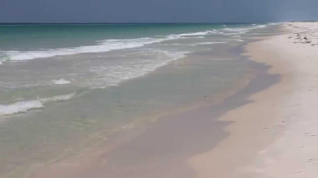 Island  Panama City Playlist