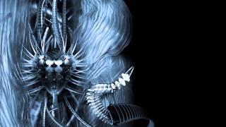 Deep Soul Duo - Fenix (Biolab Remix)