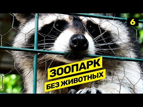 Отдых в Грузии. Тбилисский зоопарк. В Грузию на машине (2019). Vol.6