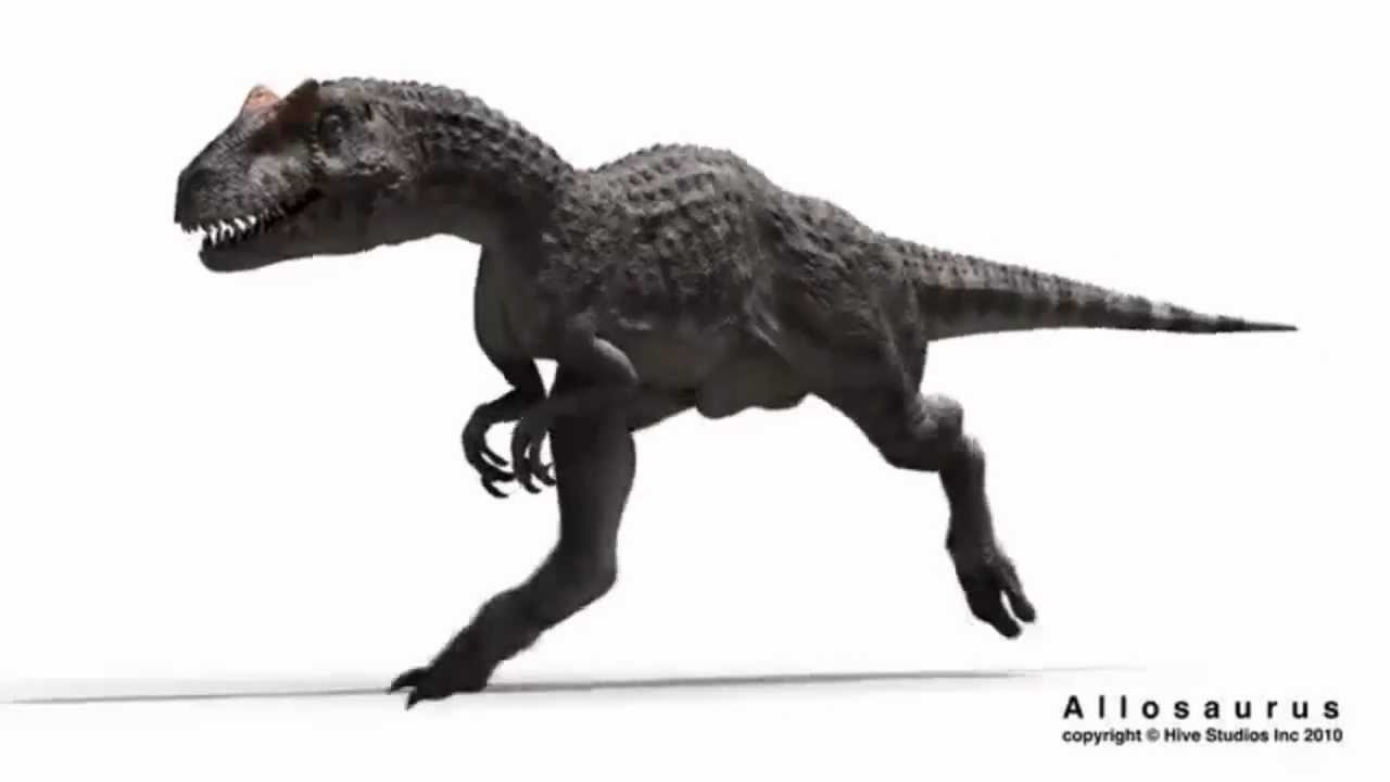 Walking With Dinosaurs 3d Wallpaper Allosaurus Running With Sound Effects Youtube