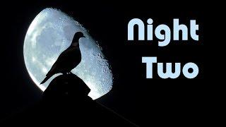 Night Two - Скачивать музыку бесплатно новинки(, 2016-08-27T18:12:56.000Z)