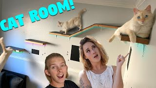 We Built our New Cat his Own Epic Cat Room!