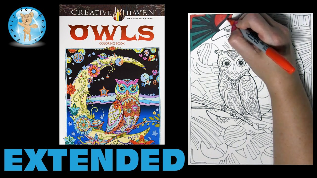 Creative Haven Owls By Marjorie Sarnat Adult Coloring Book Moon Extended