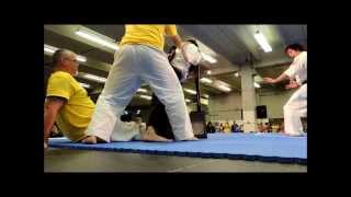 The master of Enshin Karate - Kancho Joko Ninomiya effortlessly bre...