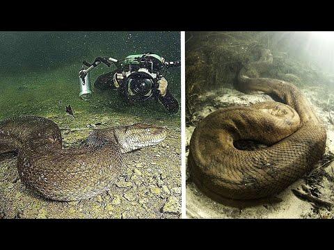 10 Schockierende Entdeckungen von Tiefseetauchern!