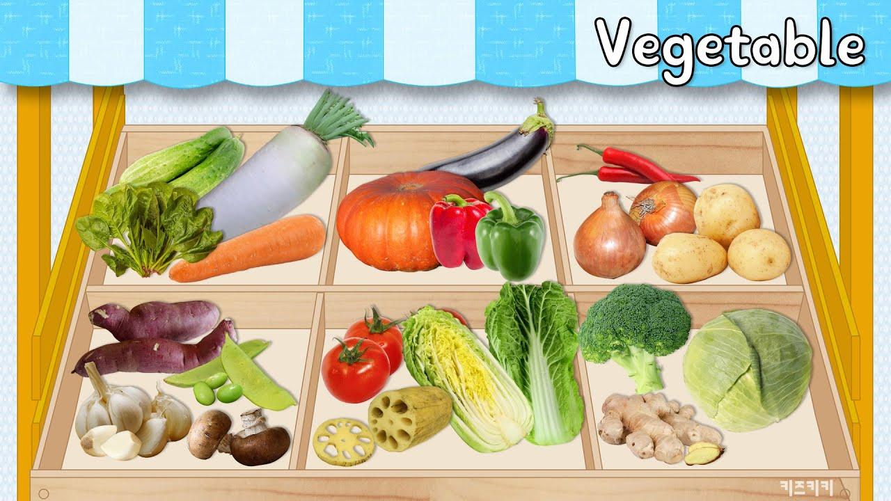 [Vegetables Name] Learn Vegetables Name in English   Name of Vegetables Basic English Learning