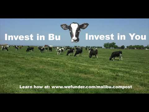 Invest in Bu, Invest in You