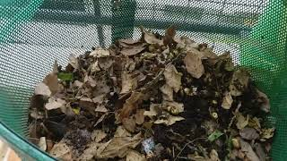 Tips on composting 1
