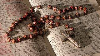Suy niệm cùng với Đức Thánh Cha Phanxicô: 08/01 — 15/01/2014