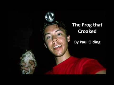 The Frog that Croaked (radio programme)