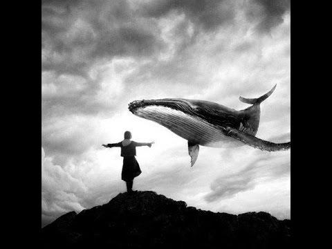 Blue Whale -peli (faktoja+kaikki tehtävät!!) - YouTube