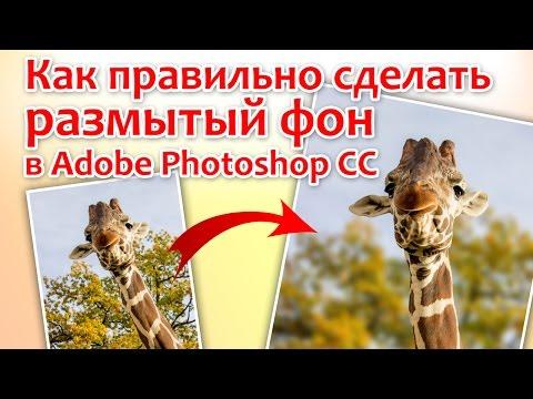 Как правильно сделать размытый фон в Adobe Photoshop CC