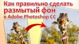Как правильно сделать размытый фон в Adobe Photoshop CC(ВИДЕО С САЙТА - https://expert-polygraphy.com/razmytyj-fon ВЫДЕЛЕНИЕ ОБЪЕКТА - https://expert-polygraphy.com/vydeleniya/ ..., 2017-03-11T07:02:48.000Z)
