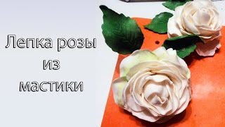 Как сделать розу из мастики. Лепка цветов  ✿ (1 часть)(Друзья! Вы давно меня просили снимать более подробные видео, что я и сделала! Запускаю курс видео