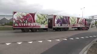 trucks, trucks, flowers and plant transport, FloraHolland 2