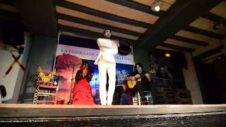 Spain, Madrid: Flamenco 3. Man Flamenco Dance