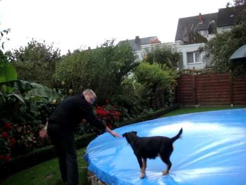 Schwimmbadabdeckung aufblasbar weltneuheit doovi for Rundpool aufblasbar