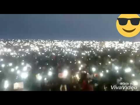Jallikattu protest st anniversary january whatsapp status