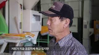 [에코맘 산골이유식] 유기농쌀 농사소개
