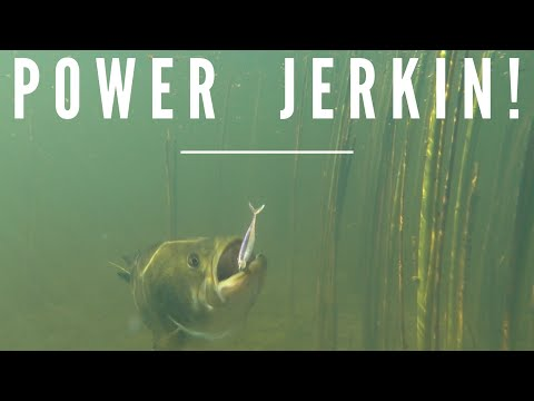 POWER JERKIN' PRE-SPAWN BASS - Dave Mercer's Facts of Fishing THE SHOW Season 12 Full Episode