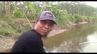 Video mancing umpan lumut pakai pelampung download MP3, 3GP, MP4, WEBM, AVI, FLV Mei 2018
