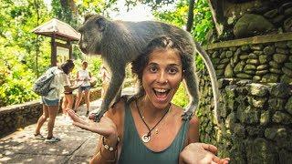 EIN TRAUM WIRD WAHR l Backpacking Bali Indonesien Vlog #2.1