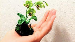 Мини Орхидея Из Бисера Прямой Эфир С Викторией