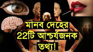 22 amazing facts about the human body that will surprise you! Mysterious world bangla !