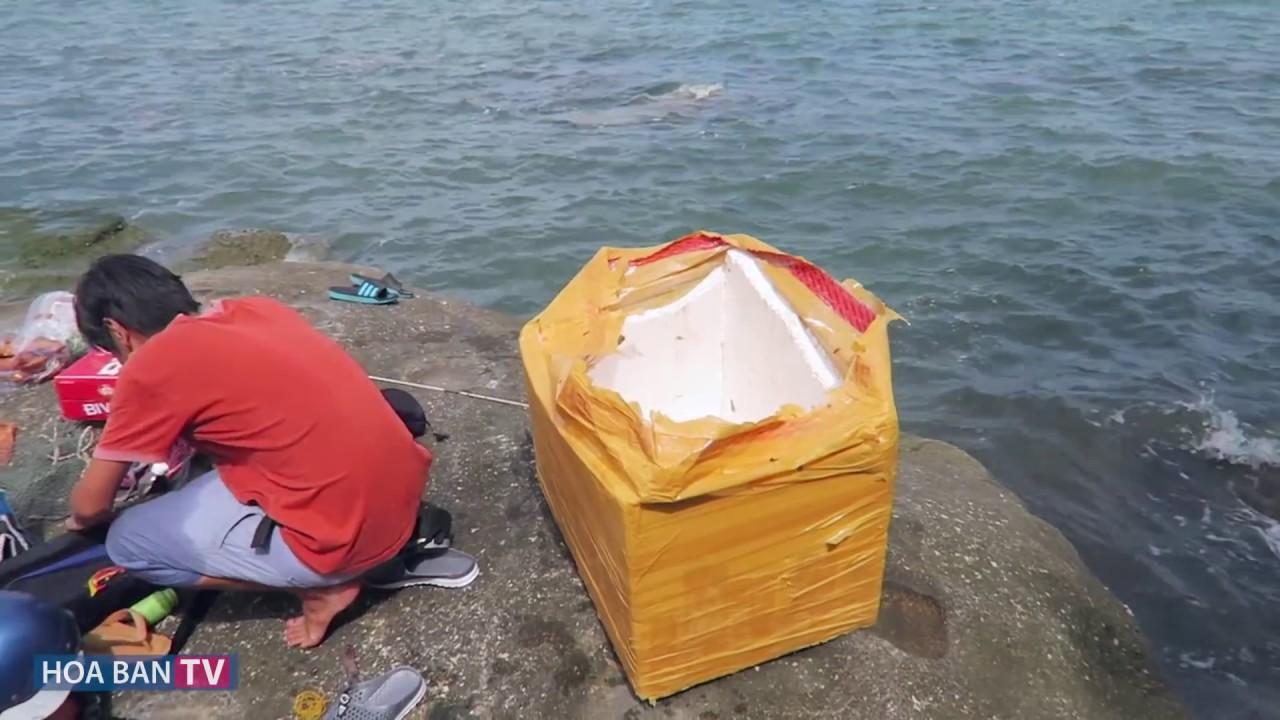 Câu cá biển gần bờ – Sea fishing near the shore #4