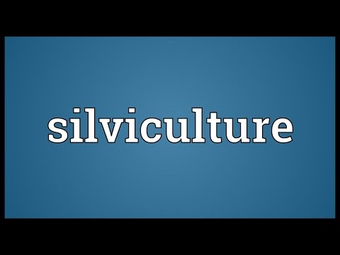 Silviculture Meaning