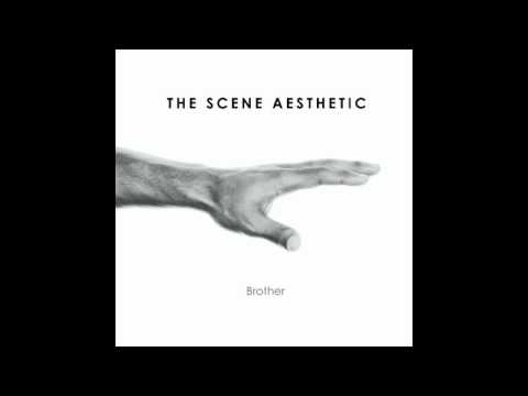 The Scene Aesthetic - If You're A Bird...