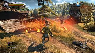 Witcher 3 awesome igni and aard build