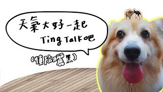全台手播【庭閃der】天氣大好一起Ting Talk吧(慎防曬黑)