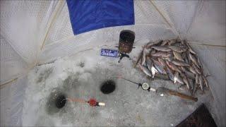 Первая зимняя ночная Рыбалка на плотву клёв Огонь Фин залив сезон 2021