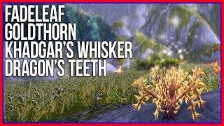 WoW HERB FARMING: Fadeleaf, Khadgar's Whisker, Goldthorn, and Dragon's Teeth