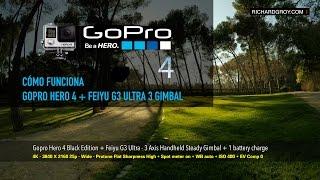 gopro hero 4 black feiyu g3 ultra 3 axis handheld steady gimball