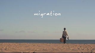 Migration - Videodanza