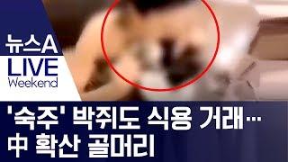 '숙주' 박쥐도 식용 거래…中 확산 골머리 | 뉴스A LIVE