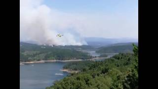 Aircraft Continue to Battle Blaze as More Than 60 Killed in Portugal Fires