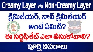 How to apply for Creamy Layer non-creamy layer certificate for BC Candidates in Telangana? in telugu