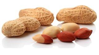 জানলে অবাক হবেন !! প্রতিদিন মাত্র ২০ গ্রাম বাদাম খেলে কি হতে পারে-দেখুন | Amazing  Benefits Of NUTS