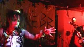 Holiday in Cambodia  The WEBB (Dead Kennedys Cover.. Goth Punk Electro)