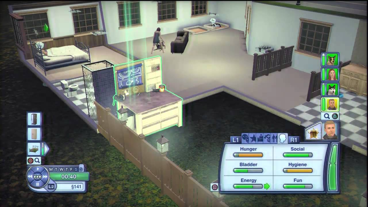 how to play sims 3 pets ps3