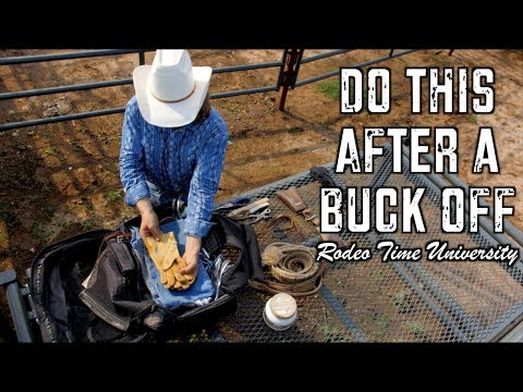 Bucked Off - Rodeo Time University