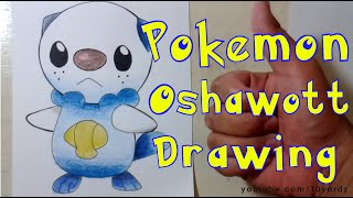 Pokemon Black and White Oshawott - Drawing HD