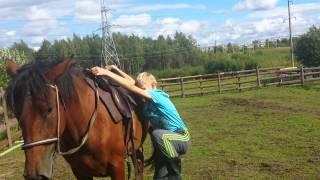 На лошади учатся кататься детишки.