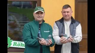Zakładanie obrączek elektronicznych na gołębie