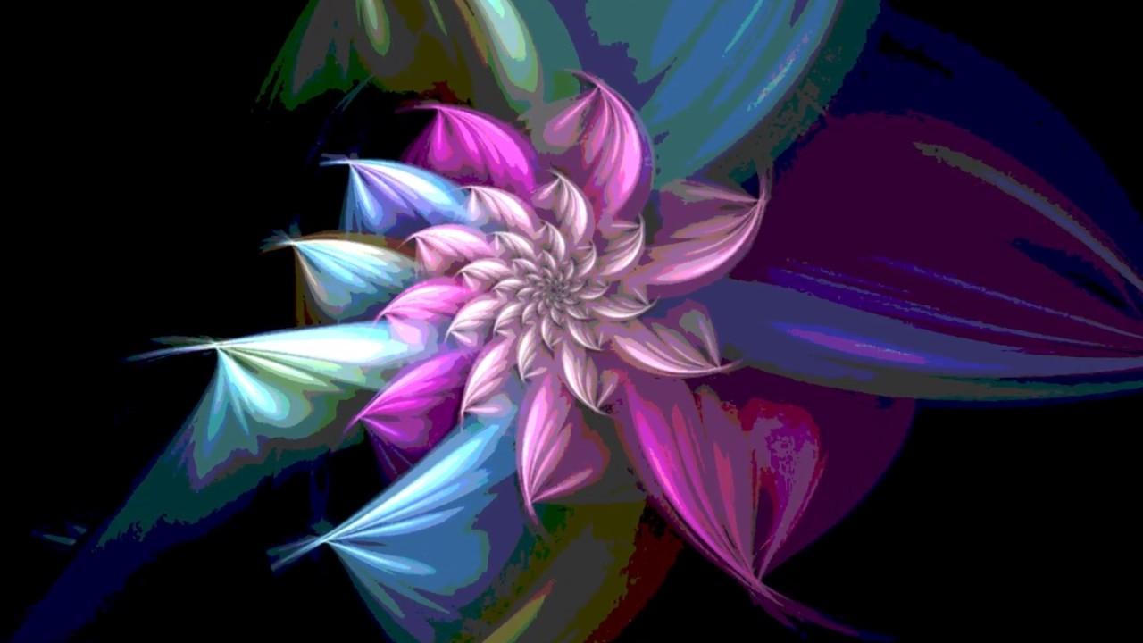 dazzling neon flowers youtube
