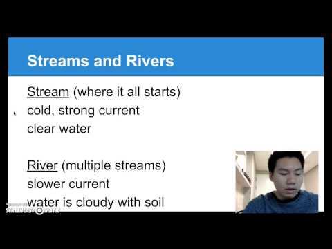 Aquatic Ecosystems (Freshwater and Marine Ecosystems)